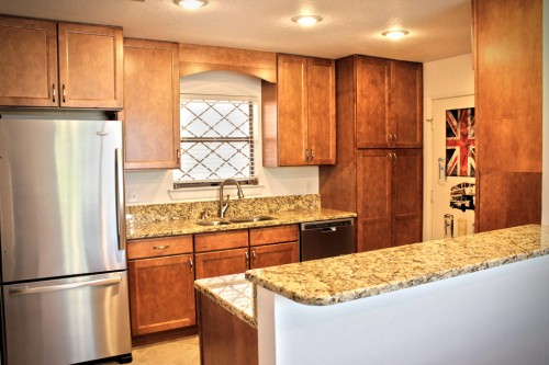 Young Kitchen Remodel (2)