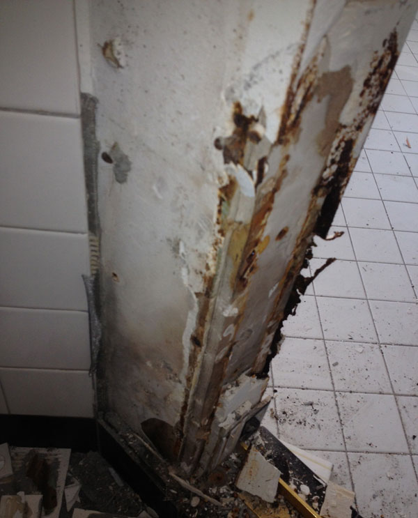 Shower Not Waterproof Growing Mold